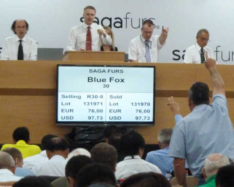 saga furs auction-210914