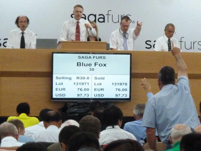 saga furs auction-210914