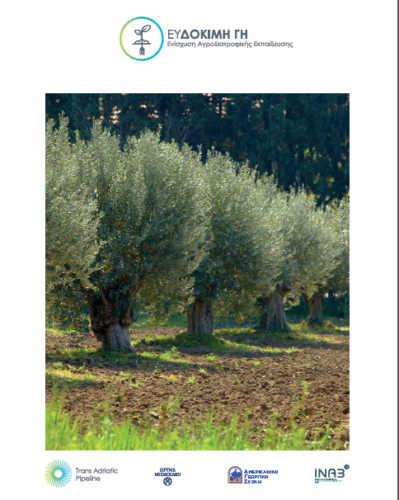 5.-Thriving-Land-brochure-GR-399x500.jpg